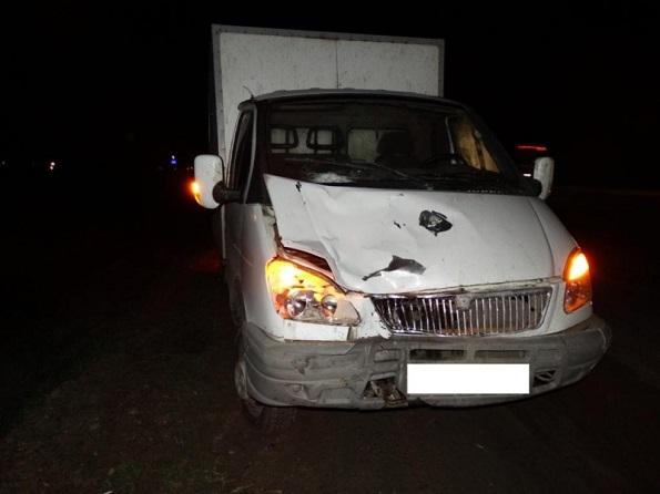 В Андроповском районе грузовой «Газель» сбил насмерть женщину