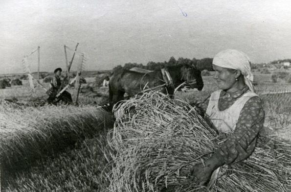 Система государственной статистики для Победы в Великой Отечественной войне