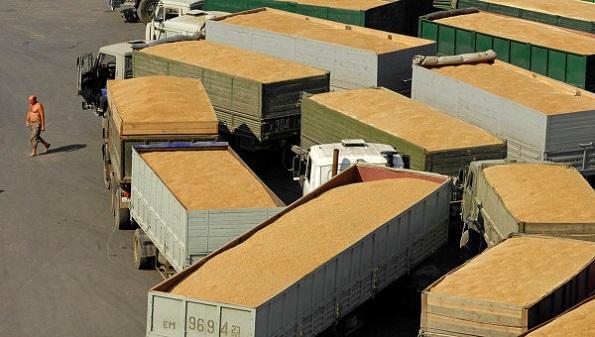 Грузовики, перевозящие урожай, под контролем ГАИ Ставрополья