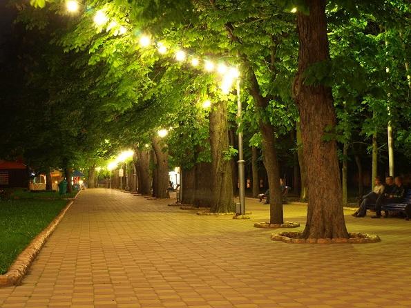 Ставрополь высадил 40 000 новых деревьев
