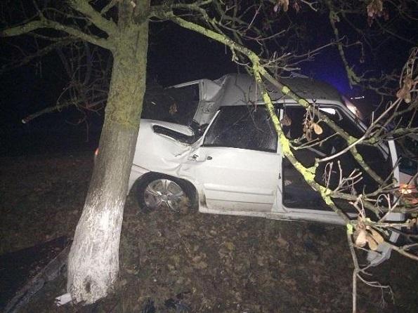 Пьяный водитель въехал в дерево в Будённовском районе