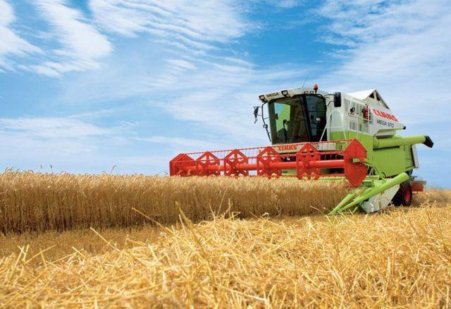 Ставропольский край собрал первый миллион тонн зерна