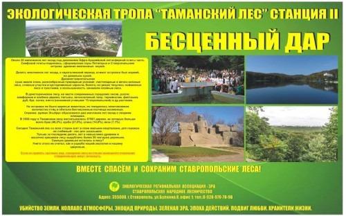 Cоциальные проекты, удостоенные грантов администрации Ставрополя