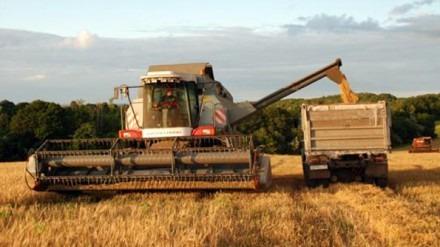 Ставропольские аграрники убрали более половины площадей зерновых культур