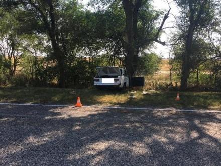 В Буденновском районе в результате наезда на дерево два человека госпитализированы