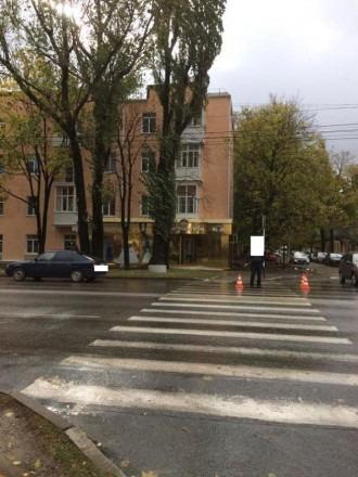 В Ставрополе на пешеходном переходе под колеса автомобиля попала девушка