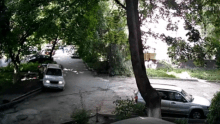 Скриншот видео угнанного авто