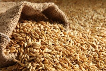 Зерно в мешке
